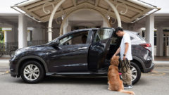 Popular ride-sharing service becomes pet-friendly