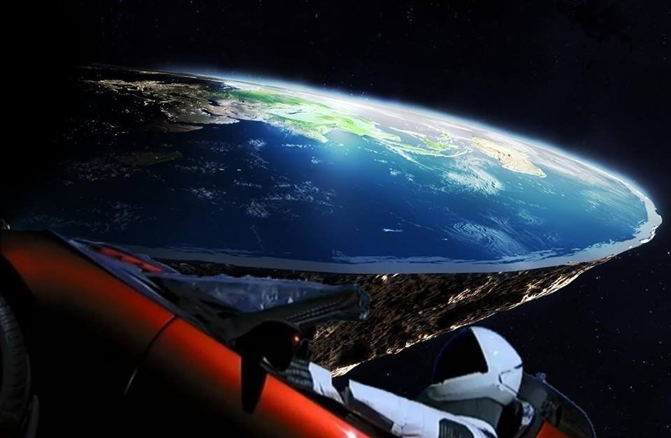 Elon Musk meme review