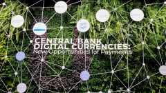 E-krona, e-peso, e-hryvnia: central bank digital currencies overview