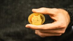 Elon Musk tweets in support of Dogecoin as its price sets record
