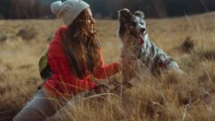UK-based bank now offers pet insurance